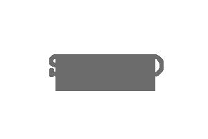 Seiko_Logo.png