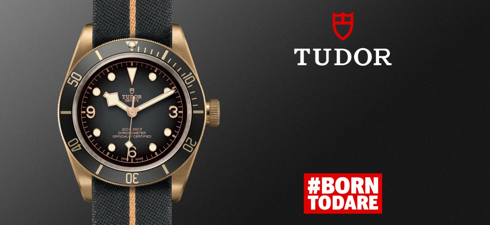 Tudor-banner